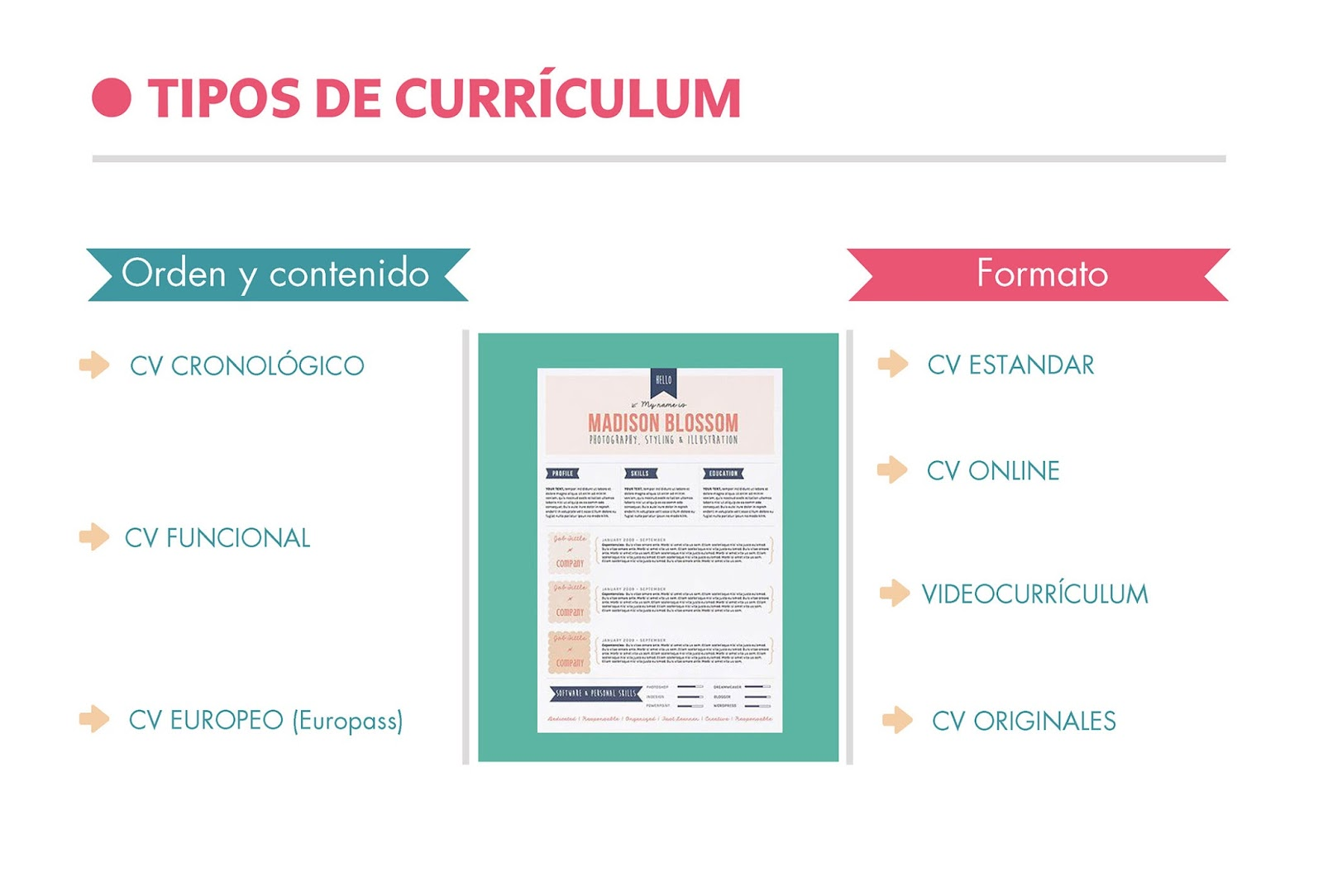 curriculum-cronologico-funcional-europeo